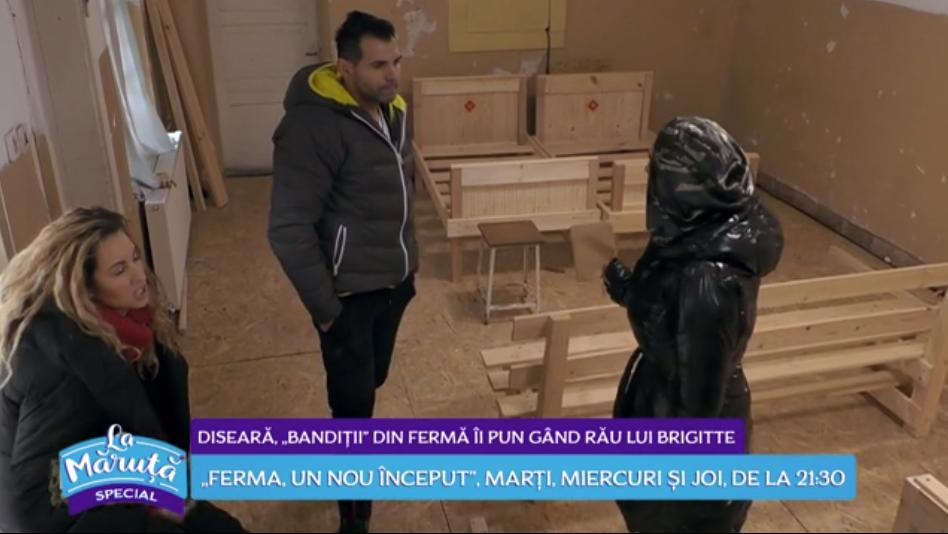 VIDEO Diseară bandiții din Ferma îi pun gând rău lui Brigitte