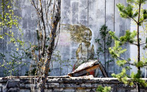 Când se va putea trăi în Cernobîl din nou. Care este părerea experților
