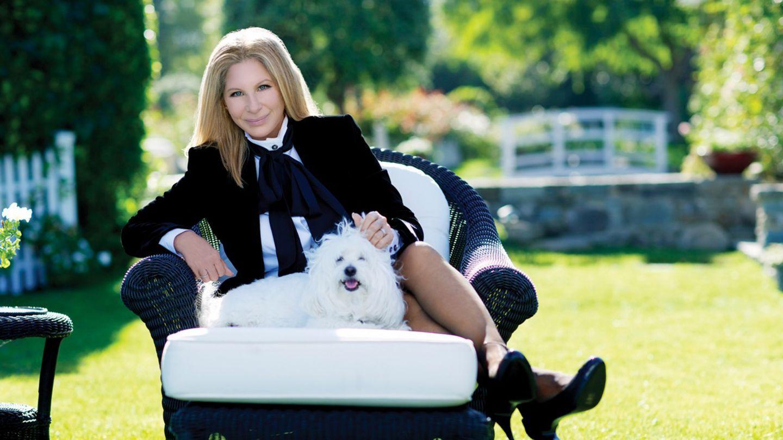 Barbra Streisand și-a dus câinii clonați la cimitir, la mormântul bdquo;mamei  lor, cățelușa Samantha