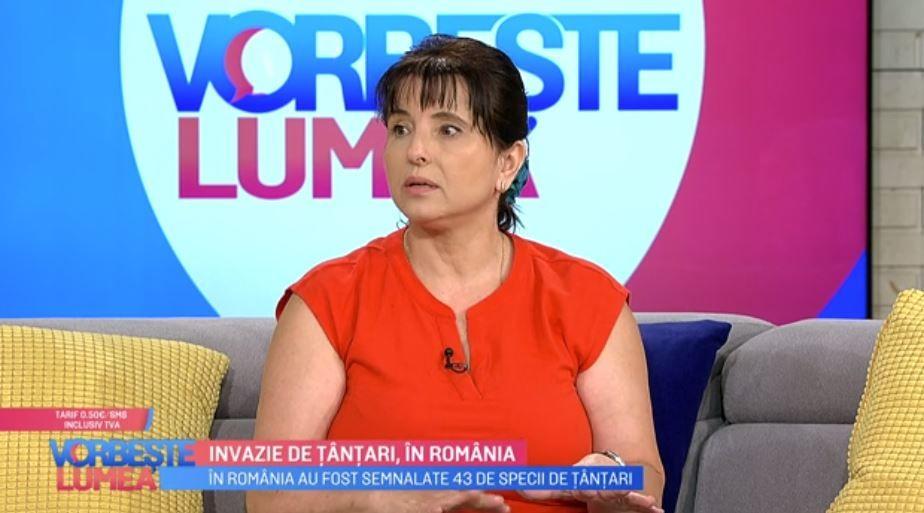 Liliana Preoțescu, despre invazia de țânțari. Cât de periculoși sunt și cum trebuie să vă protejați