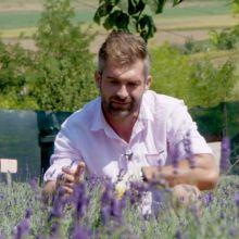 Cristian Ioniță