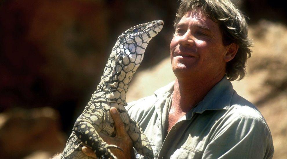 Un desen cu Steve Irwin, în Rai, alături de animalele din Australia, a devenit viral