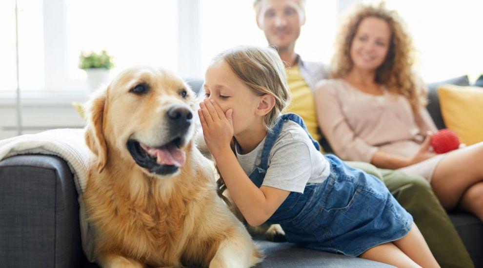 VIDEO Animalele de companie, un pericol pentru copii?