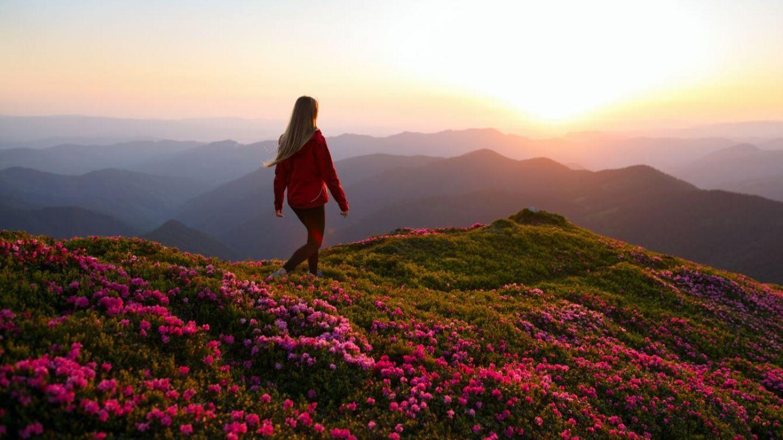 Intalnirea femeii Muntele Joli