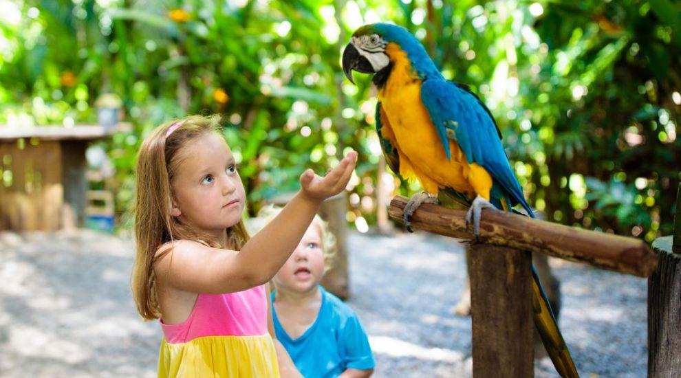 Papagalii de la grădina zoologică, mutați după ce au început să înjure vizitatorii