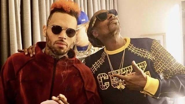 Petrecerea de ziua lui Chris Brown, cu 500 de invitați, închisă de poliție