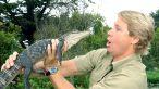 steve irwin omagiat de copiii sai au trecut 15 ani de la moartea vanatorului de crocodili 8 size2