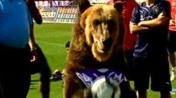 Un urs s-a apucat de fotbal!Vezi ce poate sa faca ursul lui Valladolid!