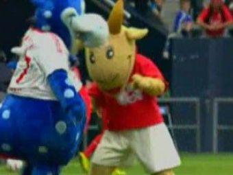 Ce caterinca! Mascotele s-au luat la bataie la meciul lui Ionita contra lui Raul! VIDEO