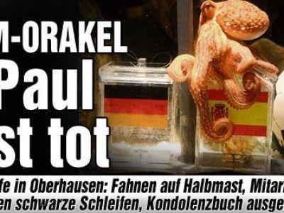 Caracatita Paul care a ghicit toate predictiile de la Mondiale a MURIT!!!