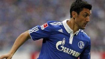 Schalke chiar se BATE cu Maccabi! Doar Huntelaar si Raul sunt odihniti! Maccabi nu il foloseste pe killerul Stelei! Ce echipe anunta nemtii: