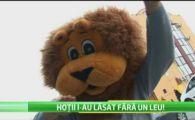 ALARMA la Timisoara! Tot orasul il cauta pe hotul care a furat costumul mascotei echipei de baschet! FANII sunt chemati sa gaseasca pielea Leului Timmy!