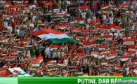 4 cluburi din Ungaria, AMENDATE pentru scandari anti-romanesti! Cei mai rai fani din Ungaria vin la Bucuresti: