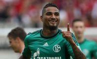 ATENTIE! Schalke si-a transferat REGE in vara asta! Principalul rival pentru Steaua are o inima de AUR! Ce a facut pentru noul sau club: