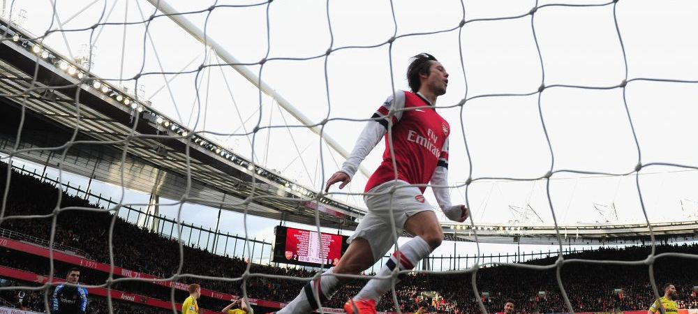 GESTUL de milioane al lui Rosicky. A dat golul victoriei cu Tottenham in secunda 72, dupa meci a fugit in tribuna. Tot stadionul l-a aplaudat