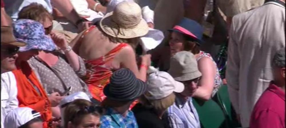 Momente incredibile la Wimbledon! Un spectator a lesinat in timpul meciului lui Halep! Vezi imagini