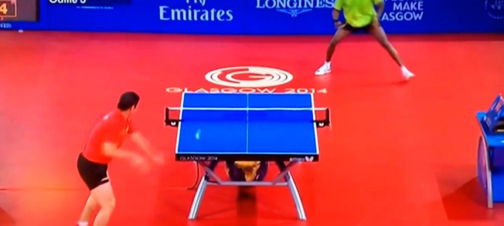 NE-BU-NI-E! :) Asta e probabil cel mai tare schimb vazut intr-un meci de tenis de masa! Pregateste-te sa fii uimit: VIDEO