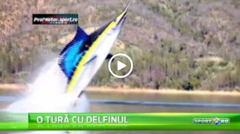 SUPER VIDEO | Vara asta ne dam cu delfinii. O companie din California le-a pus motoare si i-a lansat la apa :)