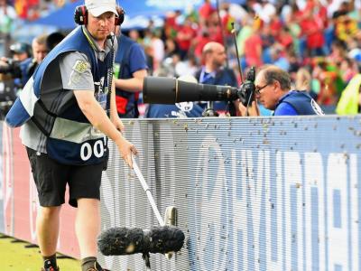 La atacul asta chiar nu s-a gandit nimeni! Invazie de molii pe Stade de France, lumea nu intelege ce se intampla! :) FOTO