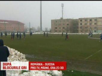 """Suedezii, socati de ce au gasit la Craiova: """"Niciodata nu mi s-a intamplat asa ceva!"""" Romania - Suedia, marti, 21:30, in direct la PROTV"""