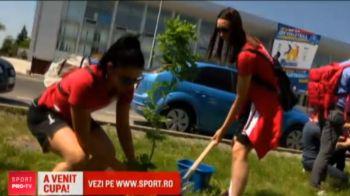 Alba Blaj, in Final Four-ul Ligii la volei! Voleibalistele au plantat copaci langa sala: surpriza de care au avut parte