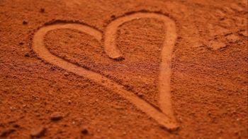 Roland Garros, pamant romanesc. Cele mai bune 10 rezultate ale tenismenilor romani inregistrate la Paris