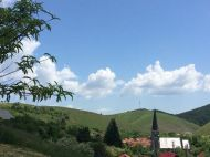 """Satul din Romania in care nu exista hoti: """"Lasam banii la poarta"""""""