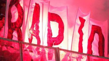 Academia Rapid a luat palmaresul, marca si culorile si a devenit OFICIAL RAPID!!!