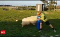 VIDEO | Antrenament inedit! Cum se pregatesc pustii din Noua Zeelanda sa devina cei mai buni rugbisti din lume