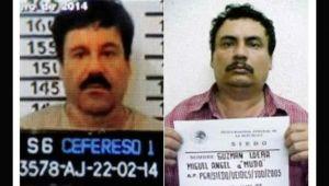 Dezastru in clanul care conduce piata traficului de cocaina! Doi interlopi celebri sunt in razboi