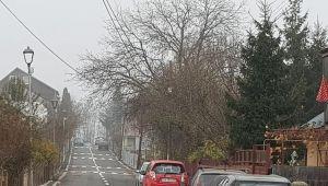 """PROSTIE MAXIMA! 9 treceri de pietoni pe 300 de metri! 'Zebra la fiecare poarta!"""" Cum arata cea mai tare strada din Romania :))"""