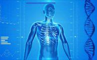 Descoperire incredibila despre corpul uman! Nimeni nu stia asta pana acum