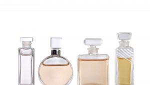 Elefant.ro BLACK FRIDAY   Reduceri URIASE la parfumuri pentru barbati! Discounturi pana la 73%