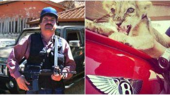 """Incredibilul garaj al celui mai bogat traficant din istorie! Ce masini conducea El Chapo si pe ce mai """"spargea"""" banii"""