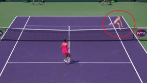 Simona Halep, premiul WTA pentru lovitura anului! VIDEO: Punctul formidabil reusit la Miami
