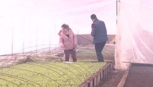 Au accesat ajutorul de 40.000 de € pentru fermieri, iar afacerea lor a explodat