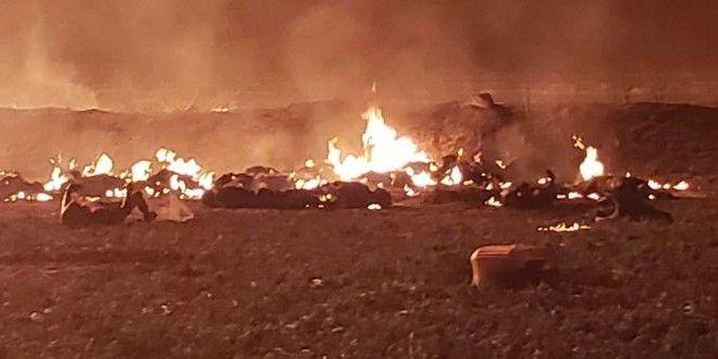 Scene ca de razboi dupa explozia din Mexic:  Cadea pielea de pe cei arsi