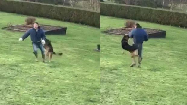 John Terry, atacat de caini! Intreg momentul a fost filmat! Cum a fost surprins fostul capitan de la Chelsea!