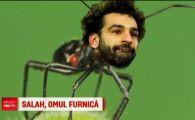 S-a facut mic cat o furnica! GENIAL: Salah e noua specie de furnici descoperita in Arabia :)