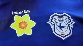 """""""Suntem foarte ingrijorati"""" Cei de la Cardiff City au reactionat imediat dupa primele rezultate ale anchetei in cazul Emiliano Sala"""