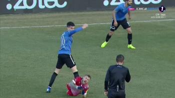 """VIITORUL - BOTOSANI 1-0   Reactia lui Golofca dupa faza la care a cerut eliminarea lui Ianis Hagi: """"M-a durut rau de tot!"""""""