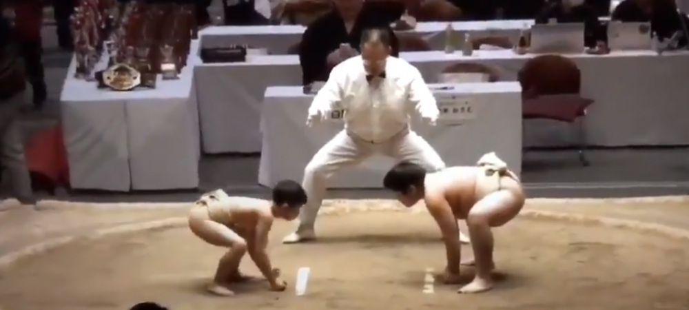 Tantarul si elefantul in ringul de sumo! Desfasurarea uluitoare a acestui meci de greutati total diferite