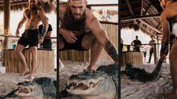 Imagini SOCANTE! Conor McGregor a intrat in ring cu un aligator! Galerie FOTO