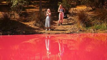 Imagini uimitoare: Motivul pentru care apa unui lac devine roz in fiecare an