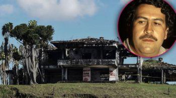 INCREDIBIL! Cu ce se ocupa gradinarul lui Pablo Escobar, la 30 de ani de la moartea celebrului traficant