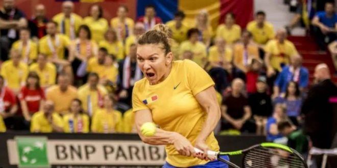 Simona Romaniei si oamenii exceptionali de langa noi!  Florin Caramavrov, dupa meciul de Fed Cup cu Franta