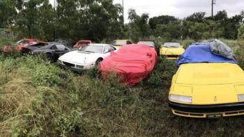 Comoara abandonata de pe un camp: 11 masini de MILIOANE ascunse timp de 10 ani. Ce se intampla cu ele. FOTO