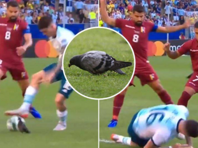 FAZA ZILEI la Copa America: mijlocasul Argentinei, deposedat de un porumbel! :) VIDEO