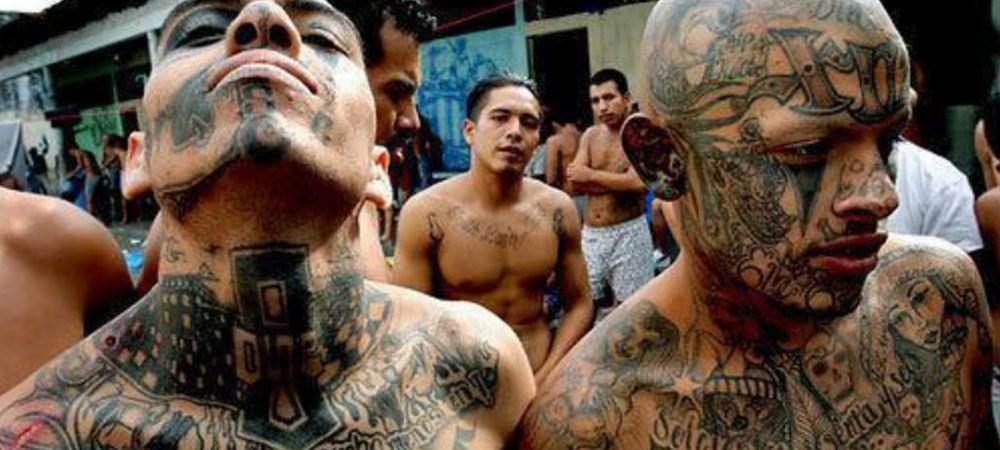 Cele mai puternice carteluri de droguri sunt in razboi! Motivul pentru care se ameninta