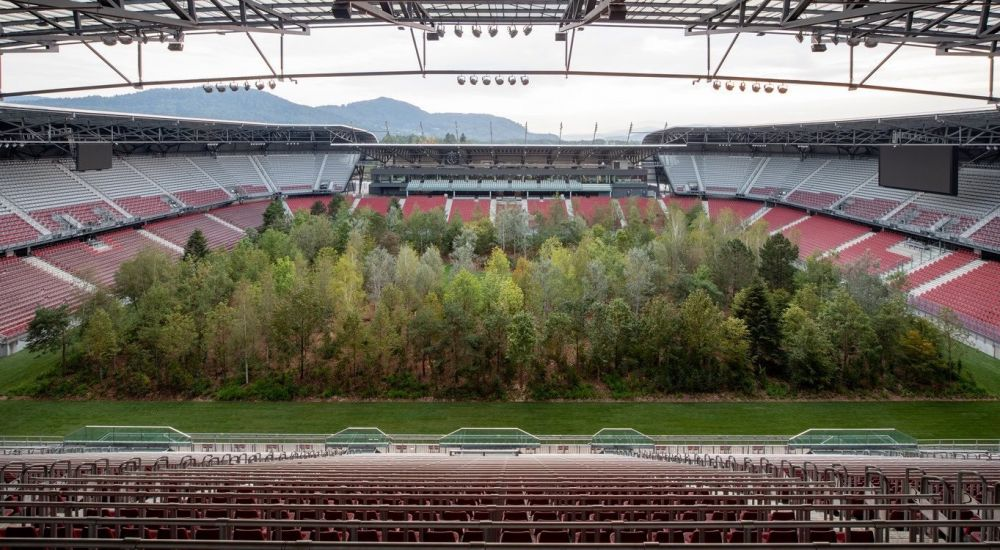 Stadion de EURO transformat intr-o PADURE! Motivul pentru care au plantat copaci pe gazon. FOTO